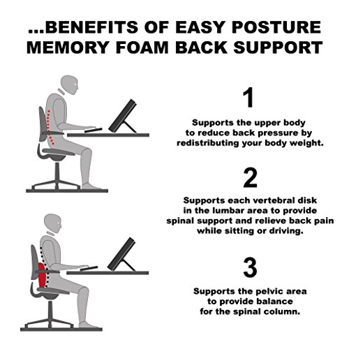 Easy Posture Memory Foam Lumbar Support Cushion Gray  : Easy Posture Lumbar Support Cushion for Office Chair Memory Foam with Double Adjustable Straps 0 3 Chairs with <strong>Forehead Support</strong> from www.sleepwellpillows.com size 500 x 500 jpeg 41kB